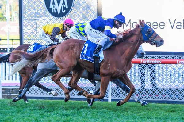 Mahamedeis overpowers them (Pat Scala/Racing Photos)