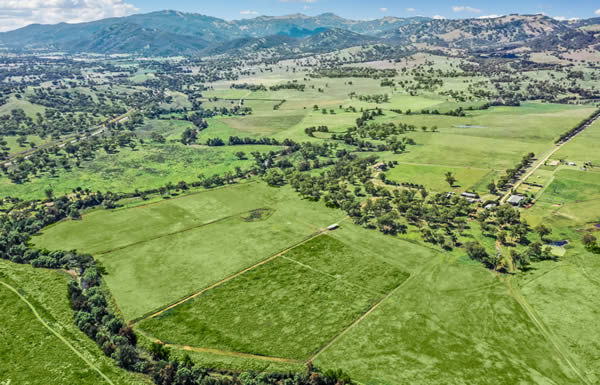 Ballygrove will be the new home for Lime Country Thoroughbreds.