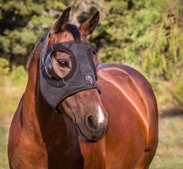 Click to find out more about Equilume light masks.