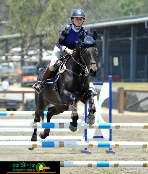 Charly Robinson and Pure Obsession won three of the four classes! image OzShotz