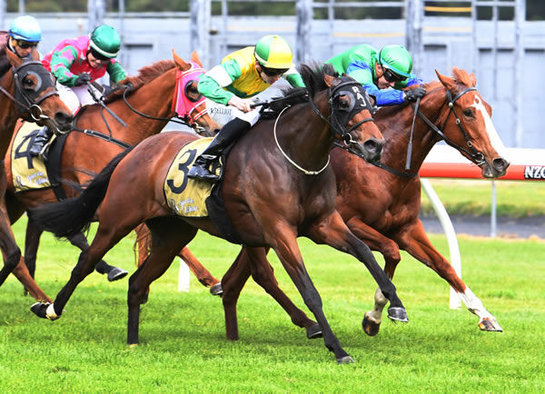 Class mare Concert Hall (outer) digs deep to secure victory at Trentham Photo Credit: Race Images – Peter Rubery