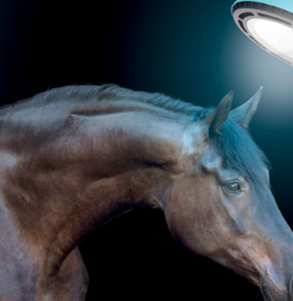 Equilume Stable Lighting is a great innovation - click for more information.