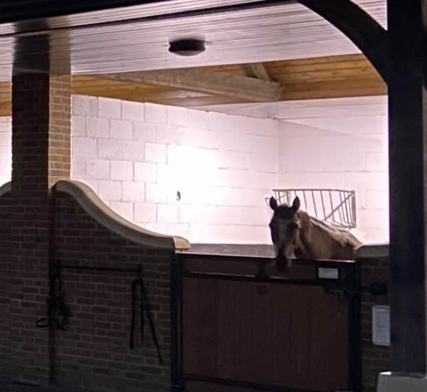 Click for more infotmation on Equilume stable lighting.