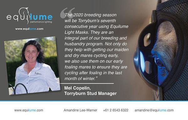 Click for more information on Equilume light masks.