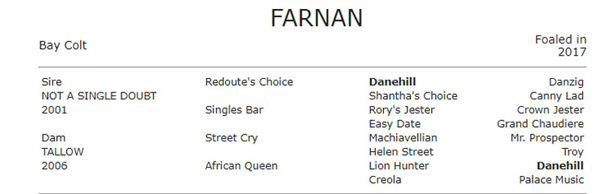 2020 Golden Slipper winner Farnan