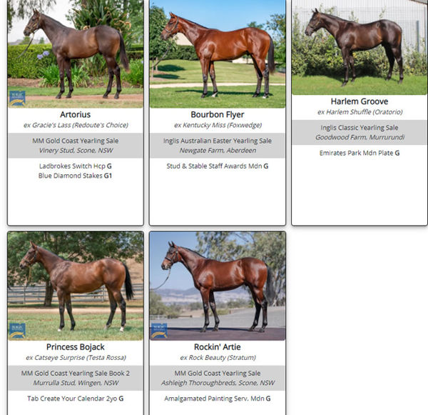 Click to see the winners so far by Flying Artie as yearlings.