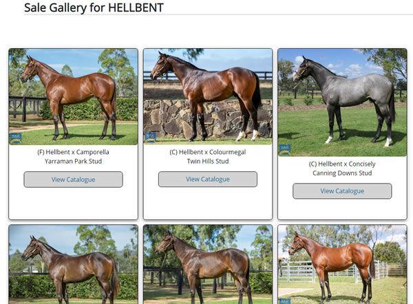 Hellbent Gallery