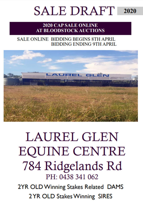 Click to see pedigrees and images for the Laurel Glen yearlings.