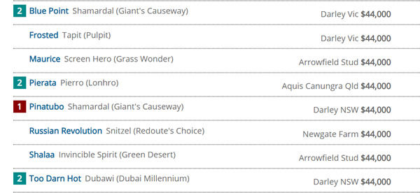 Click to see the full interactive Breednet Sire Directory, sort them h ow you  want to see them.