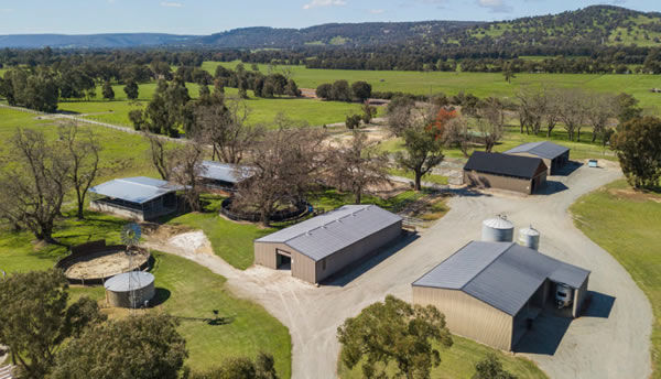 Touchstone Farm has been purchased as a thoroughbred welfare facility by RWWA