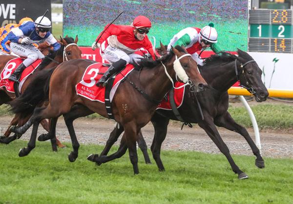 Aegon (NZ)  wins the NZ 2,000 guineas.