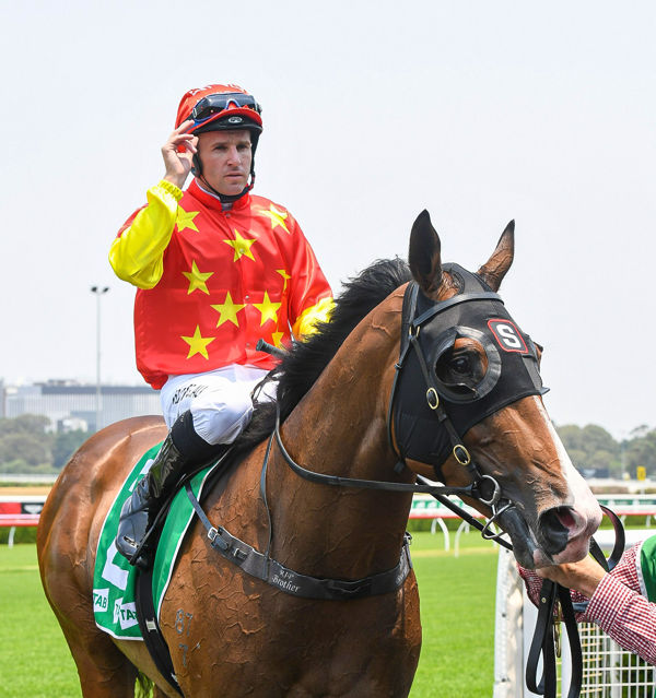 Aim - Tommy Berry next stop Magic Millions