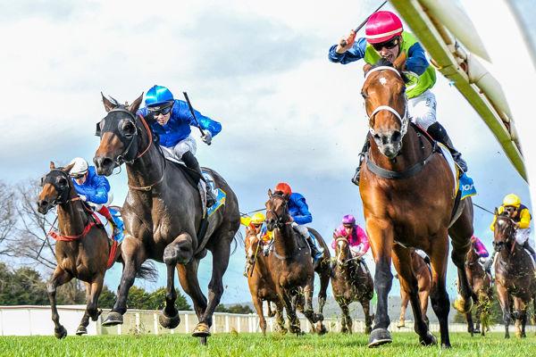 Albarado fends off a sea of blue (Brett Holburt/Racing Photos)