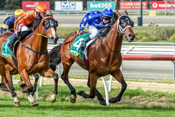 All Too Huiying scores a fighting win (Brett Holburt/Racing Photos)