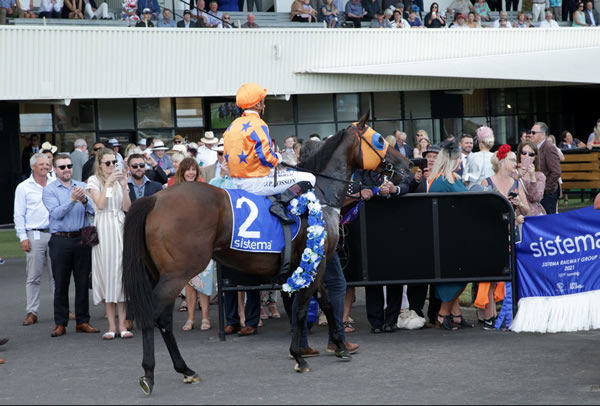 Avantage and Opie Bosson are greeted in the Ellerslie birdcage by the mare's adoring owners Photo credit: Trish Dunell