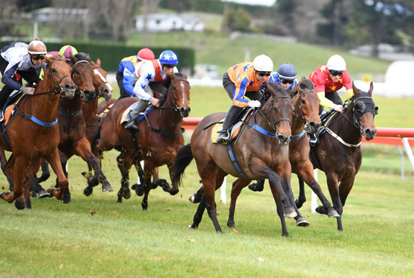 Avantage winning her 1100m trial at Taupo on Wednesday. Photo: Race Images