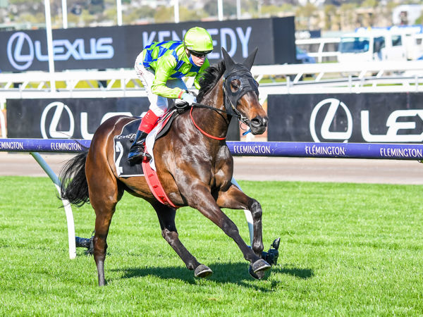 Barb raider all systems go for the Kennedy Oaks (image Pat Scala/Racing Photos)