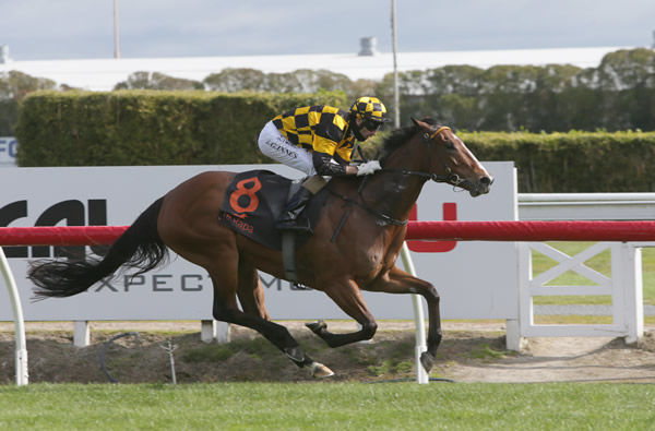 Bavella will contest the Gr.2 Sapphire Stakes (1200m). Photo: Trish Dunell