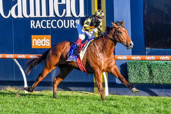 Behemoth wins the G1 Memsie Stakes - image Racing Photos