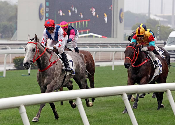 Big Party wins the G3 Bauhinia Sprint Trophy - image HKJC