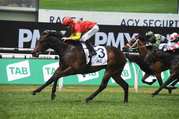 Captivant wins at Randwick - image Steve Hart