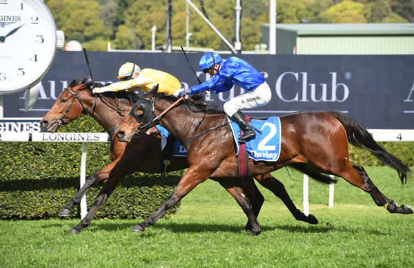 Dame Giselle wins the G2 Silver Shadow - image Steve Hart