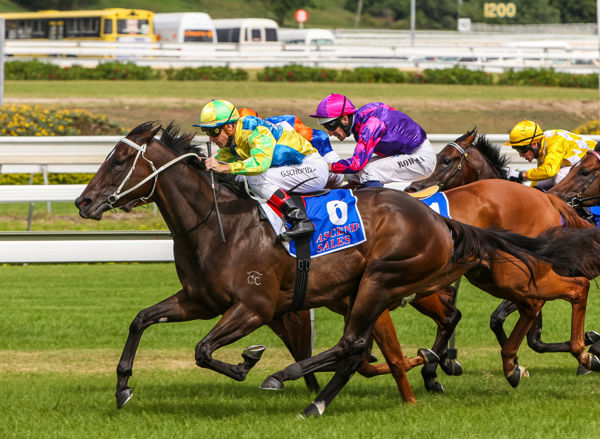 De Lightning Ridge wins the Challenge Stakes in track record time (Mark Smith)