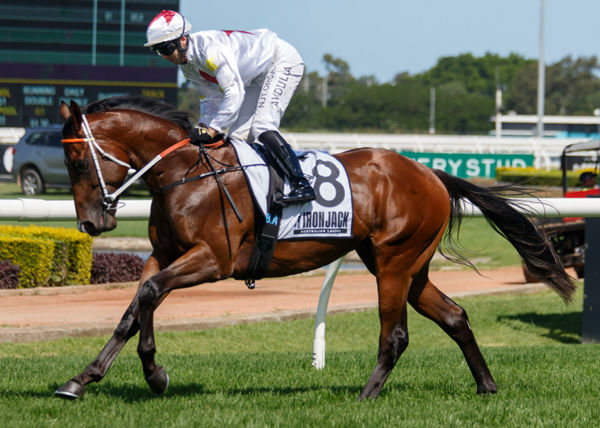 Dio was a $1.1million Inglis Easter yearling purchase.