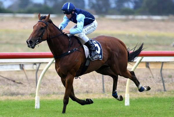 Ever So Easy winning at Ruakaka on Thursday. Photo: Kenton Wright (Race Images)