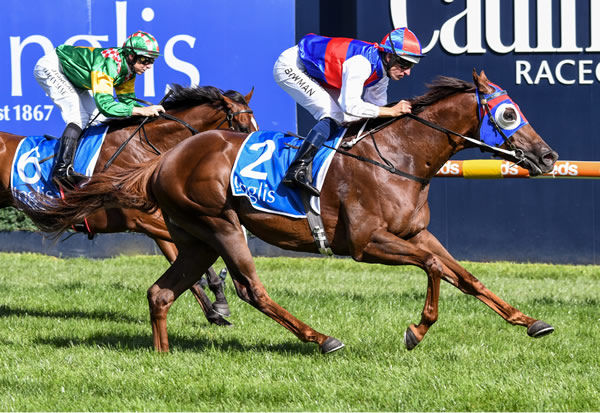 Excess Funds wins the $500,000 Inglis Dash - image Racing Photos