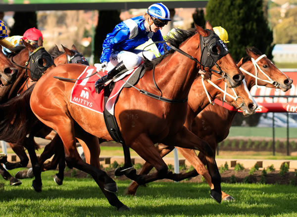 Faatinah winning the G2 McEwen Stakes last year - image Grant Courtney