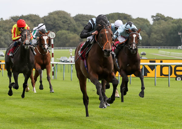 Fancy Man wins the Listed Ascendant Stakes - image Haydock Racecourse Twitter