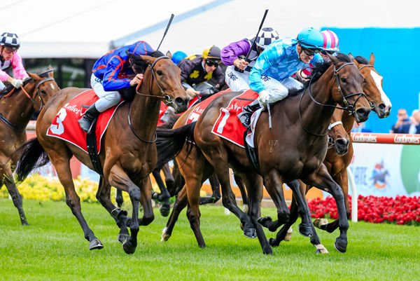 La Falaise flashes late to deat-heat with Fascino