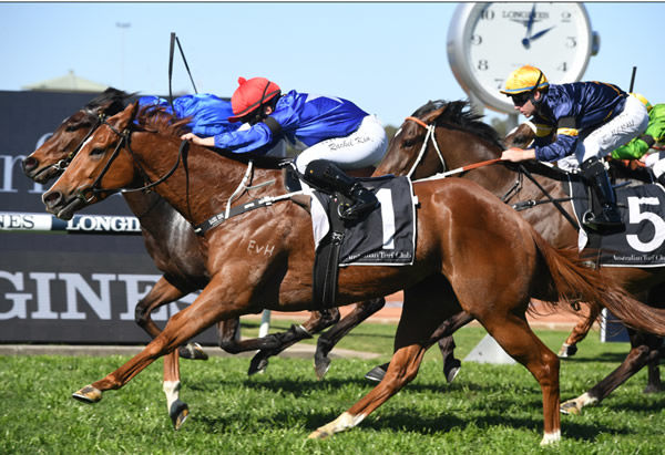 Fituese wins in style a Rosehill - image Steve Hart
