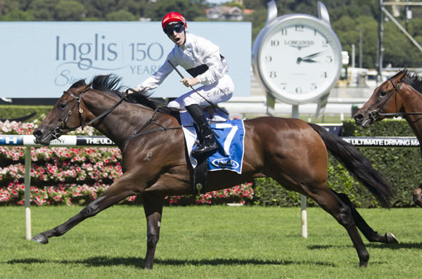 Newhaven Park's $1million earner Frolic has tested in foal to Yes Yes Yes
