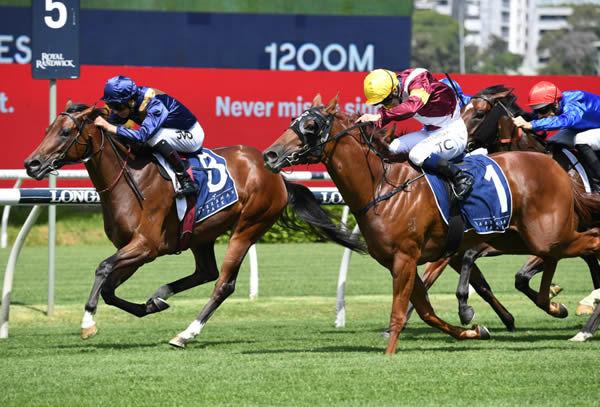 Glistening wins the G2 Reisling Stakes - image Steve Hart