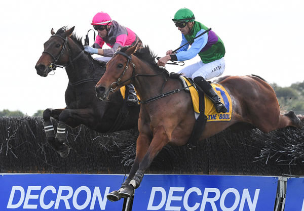Gold Medals (outside) and Zed Em go head-to-head in the Grand Annual Steeplechase (5500m). Photo: Pat Scala (Racing Photos)