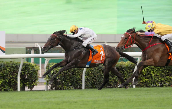 Golden Sixty was sold as a yearling at Magic Millions and then bought for Hong Kong at NZB Ready to Run - image HKJC