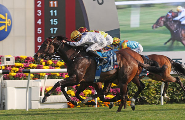 Golden Sixty wins the G1 Stewards Cup - image HKJC