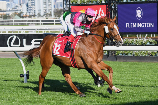 Jod done $10,000 online purchase Gundec is off to the derby (image Pat Scala/Racing Photos)