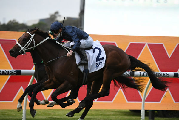 Cream rises to the top, Head of State beats Profondo to win G3 Gloaming Stakes - image Steve Hart