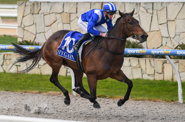 Hindaam wins in a breeze - image Natasha Morello / Racing Photos