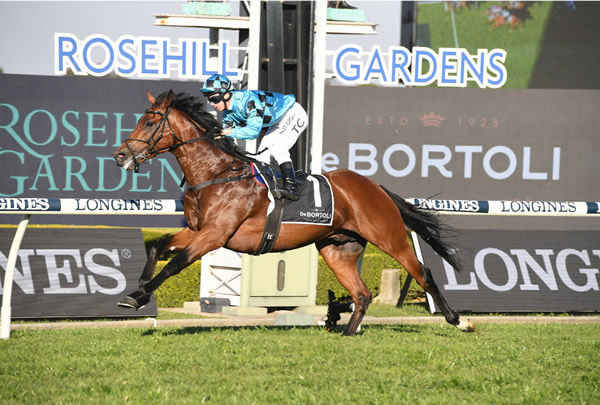 Holyfield scores a dominant win in the G3 Ming Dynasty - image Steve Hart