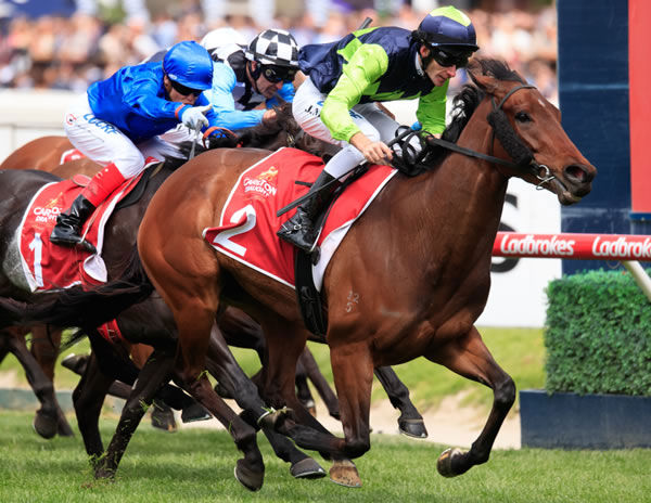 Humma Humma wins the Listed Alinghi Stakes at Caulfield - image Grant Courtney