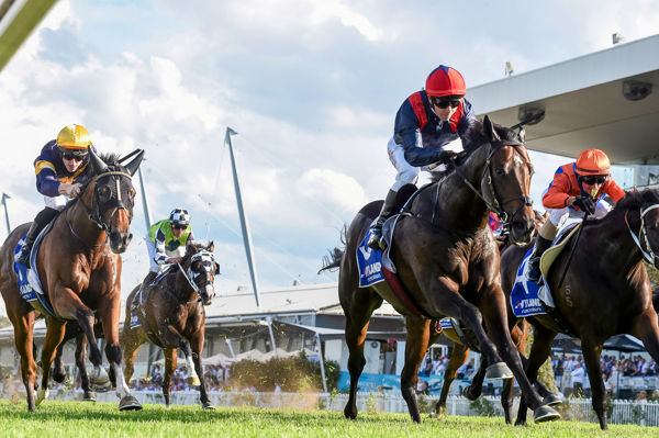Off to the Doncaster Mile (image Steve Hart)