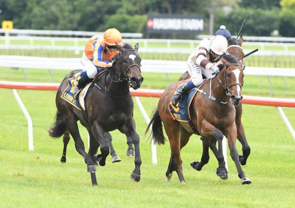 Imperatriz in the Te Akau colours salutes at Otaki on Thursday - image Te Akau Racing.