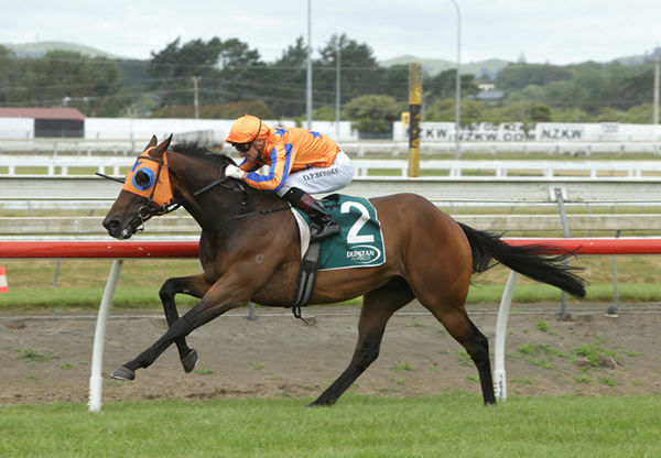 Opie Bosson has In A Twinkling at full stretch as they head to victory in the Gr.3 Franklin Auctions Counties Cup (2100m) Photo Credit: Trish Dunell