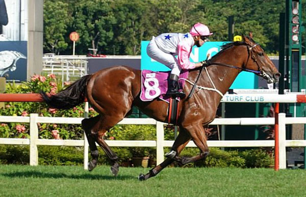 Inferno wins the Lion City Cup - image Singapore Turf Club