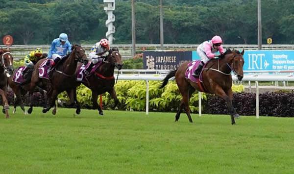 Inferno wins the Singapore Guineas - image Singapore Turf Club