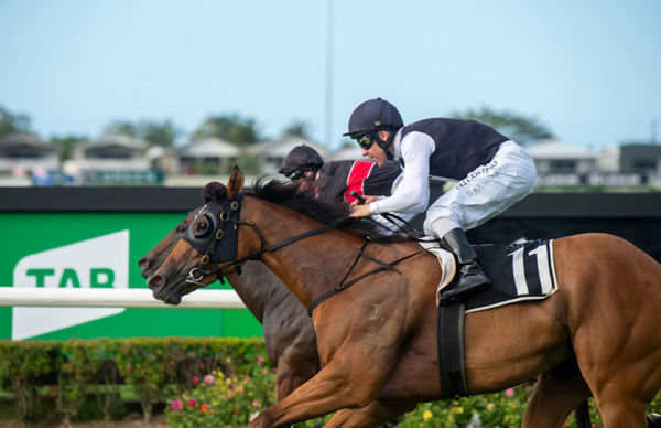 Isotope wins the Gold Edition over Away Game - image Racing Queensland